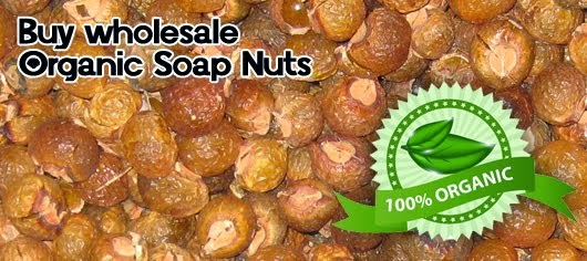 Organic wholesale Soap nuts