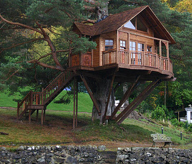 The Owl A Simple Guide To Tree Houses