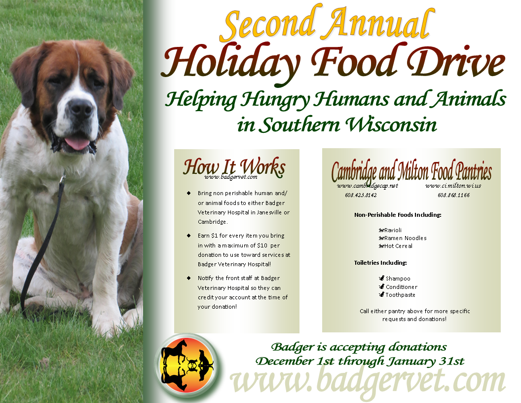 2nd Annual Holiday Food Drive | Badger Veterinary Hospital
