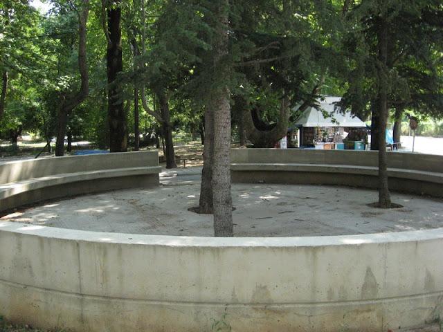 Τσιμένταραν δέντρα για να διακοσμούν παγκάκι
