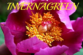 El blog de Invernagreen. Noticias, historia, ideas para compartir y muchas más cosas interesantes s