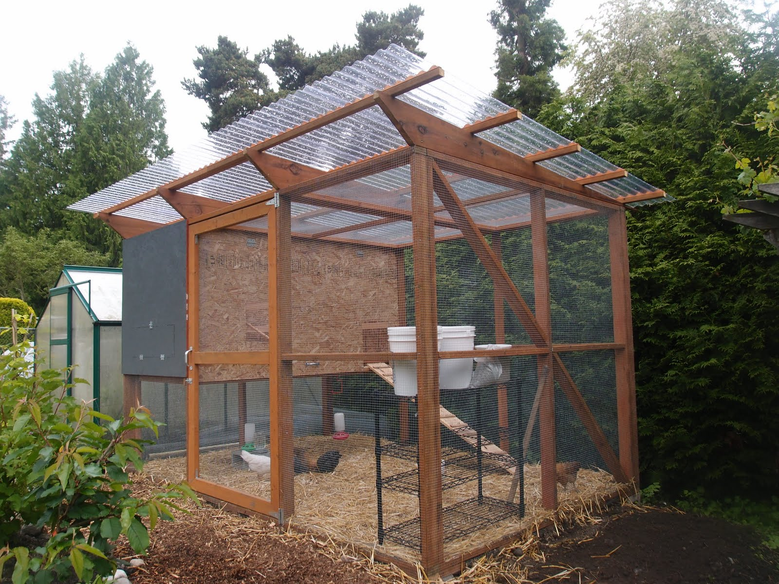The Chicken Coop Is Done Enough Northwest Edible Life