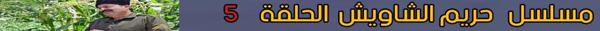 حريم الشاويس حلقة 5