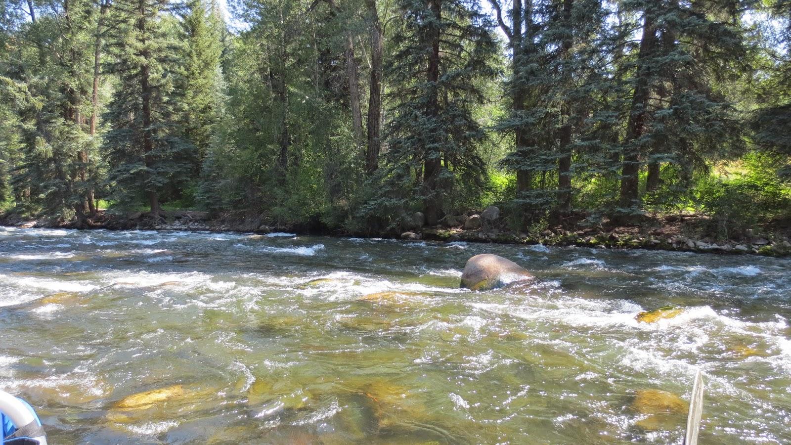 Jay scott outdoors 7 20 14 colorado fishing report for Roaring river fishing