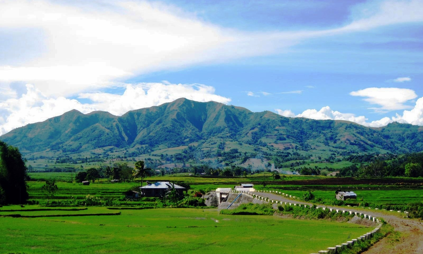 Bukidnon Philippines  City new picture : Bukidnon ~ What's New Philippines