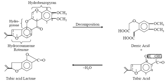 Decomposition of rotenone yields derric acid and tubic acid