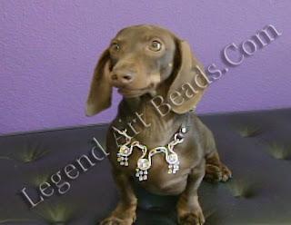 Dog Jewellery