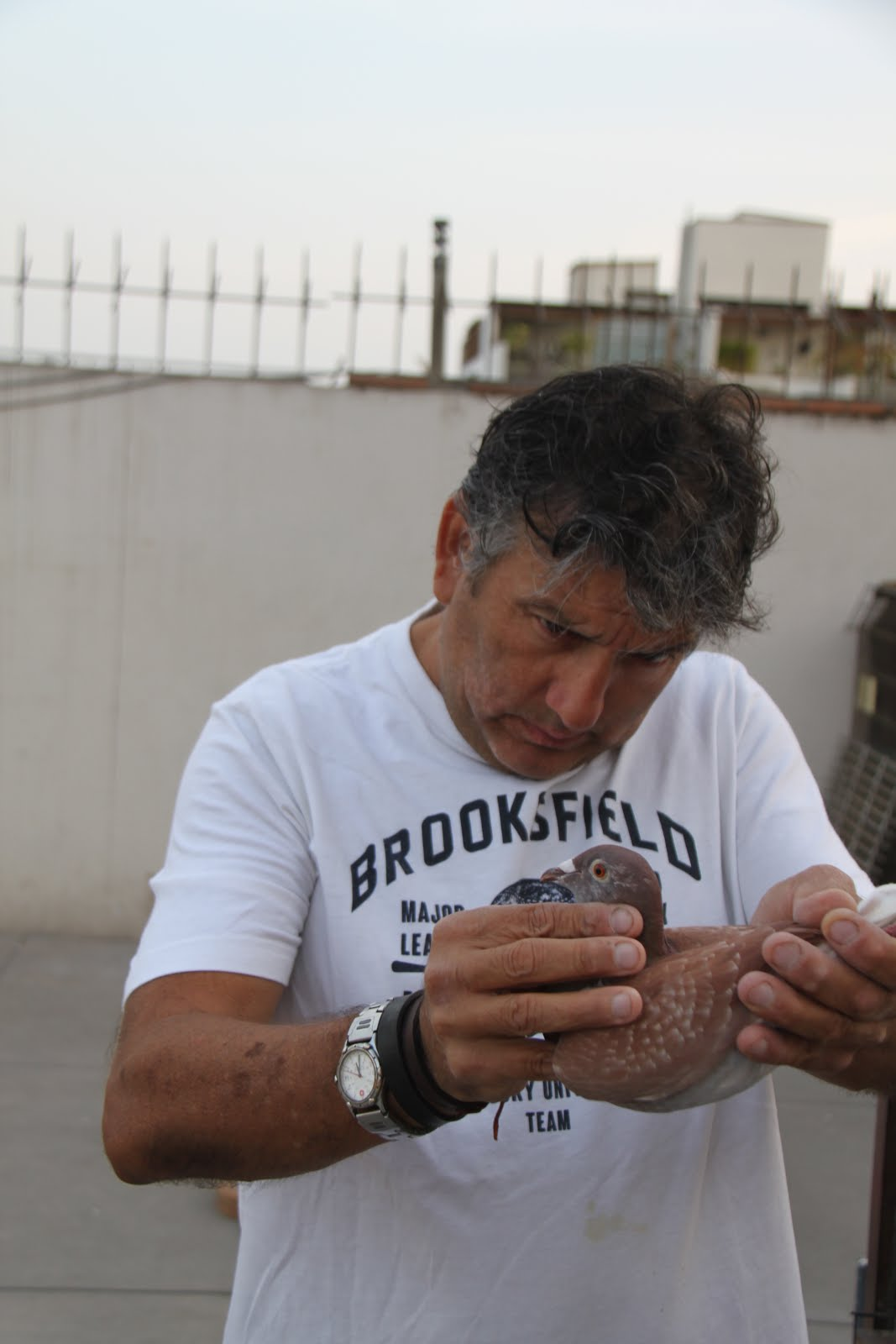 Ivan Rondon