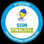 Finalista 2013