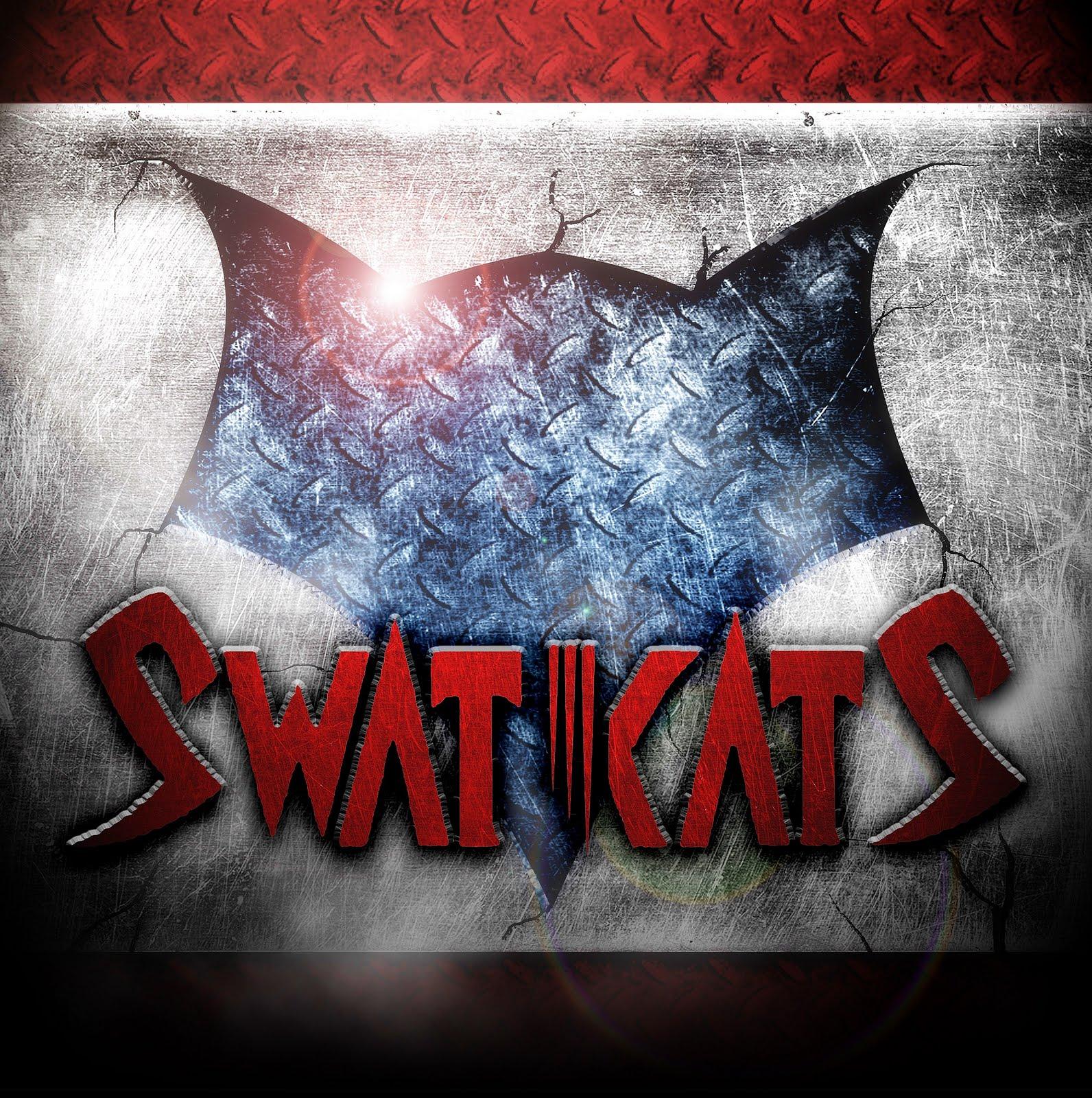 http://4.bp.blogspot.com/-Sey91ZerIlk/Tf9Fj2eV3YI/AAAAAAAAAJo/JW6xQL-KSTY/s1600/Swat-Kats.jpg