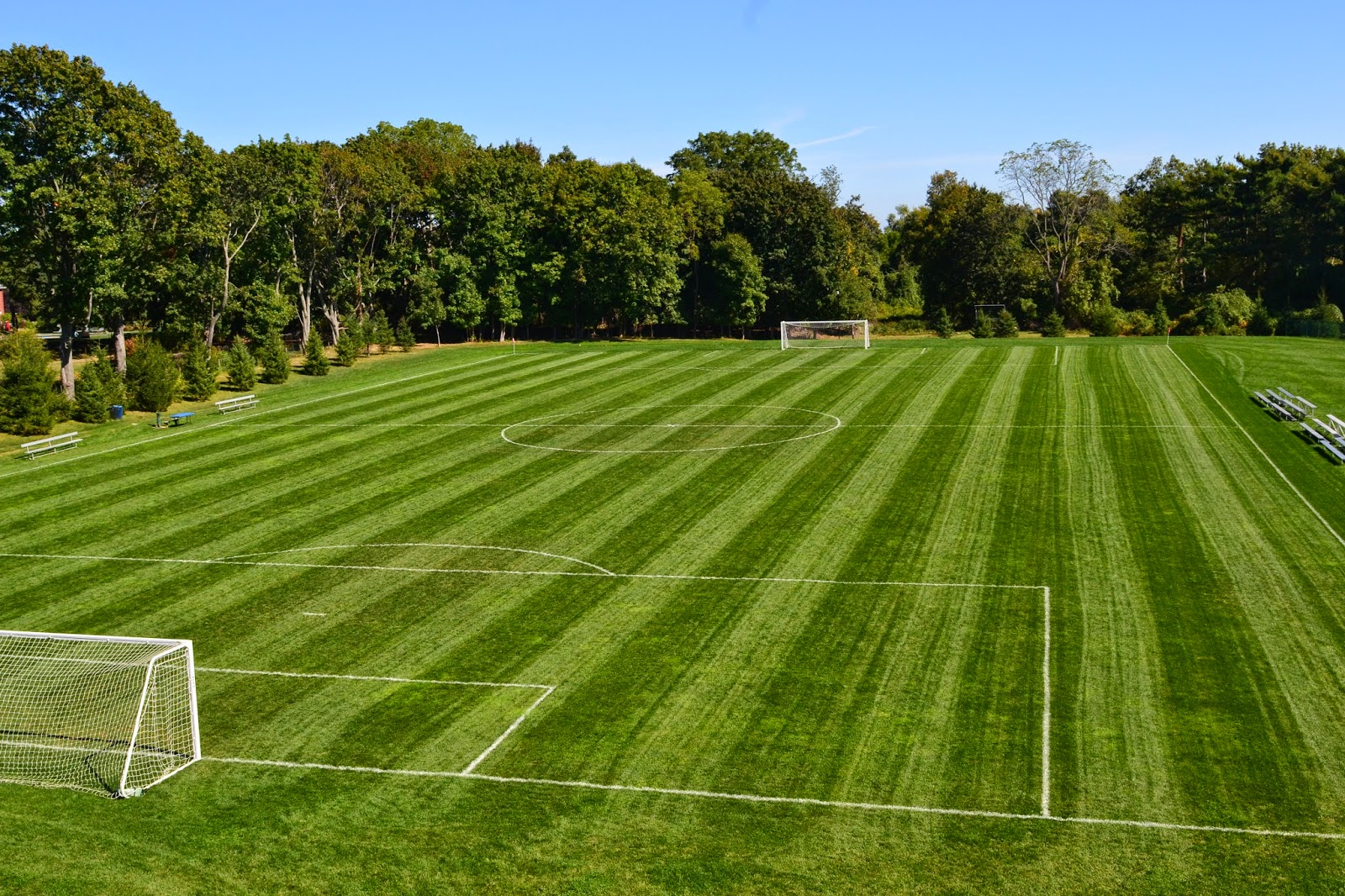 Soccer Field In My Backyard : Going Organic? with Greens Farms Academy in Westport, Conn
