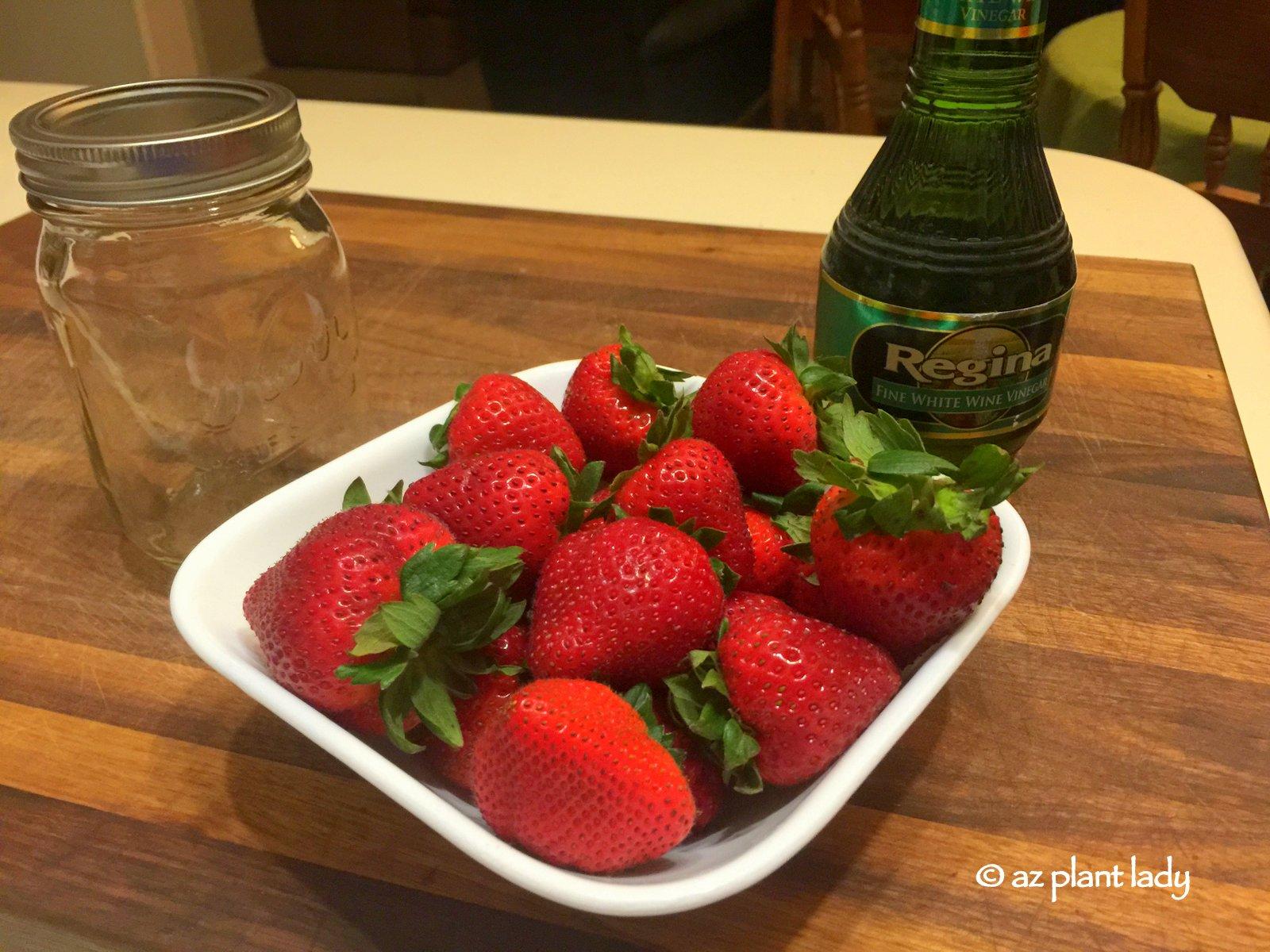 Diy In The Garden Making Fruit Vinegar Ramblings From A