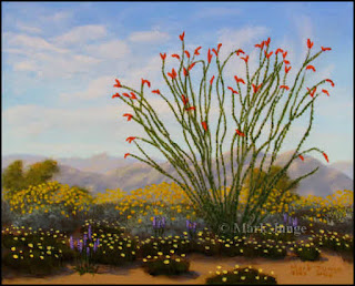 spring,ocotillo,desert flowers,wildflowers,brittlebush,Encelia,desert dandelion,lupine