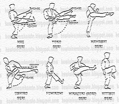 Karate & Martial Arts Training : Martial Arts Roundhouse ...