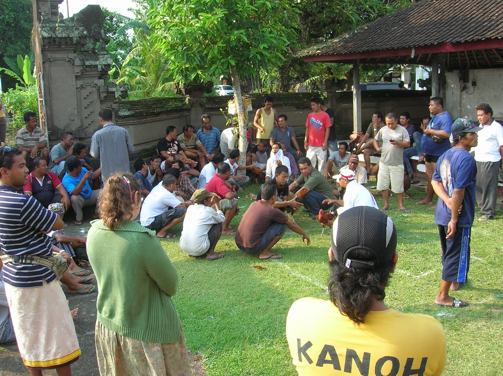 Pelea de gallos, Bali, vuelta al mundo, round the world, La vuelta al mundo de Asun y Ricardo