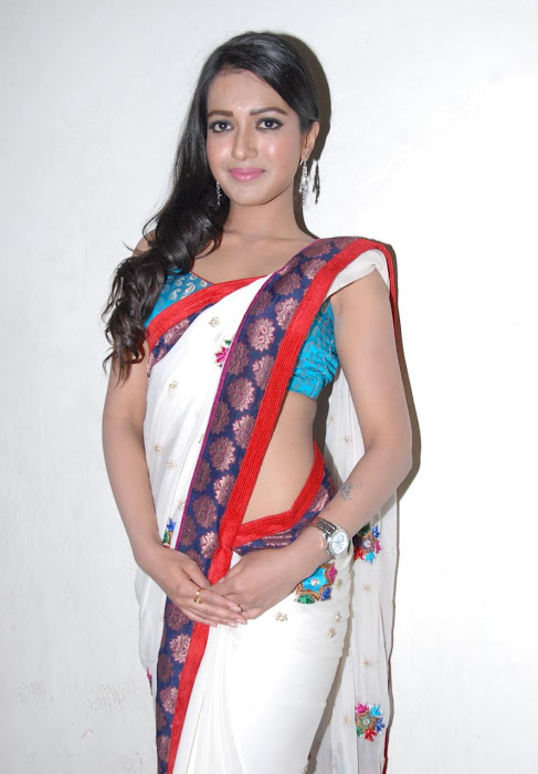 katherine saree hot photoshoot