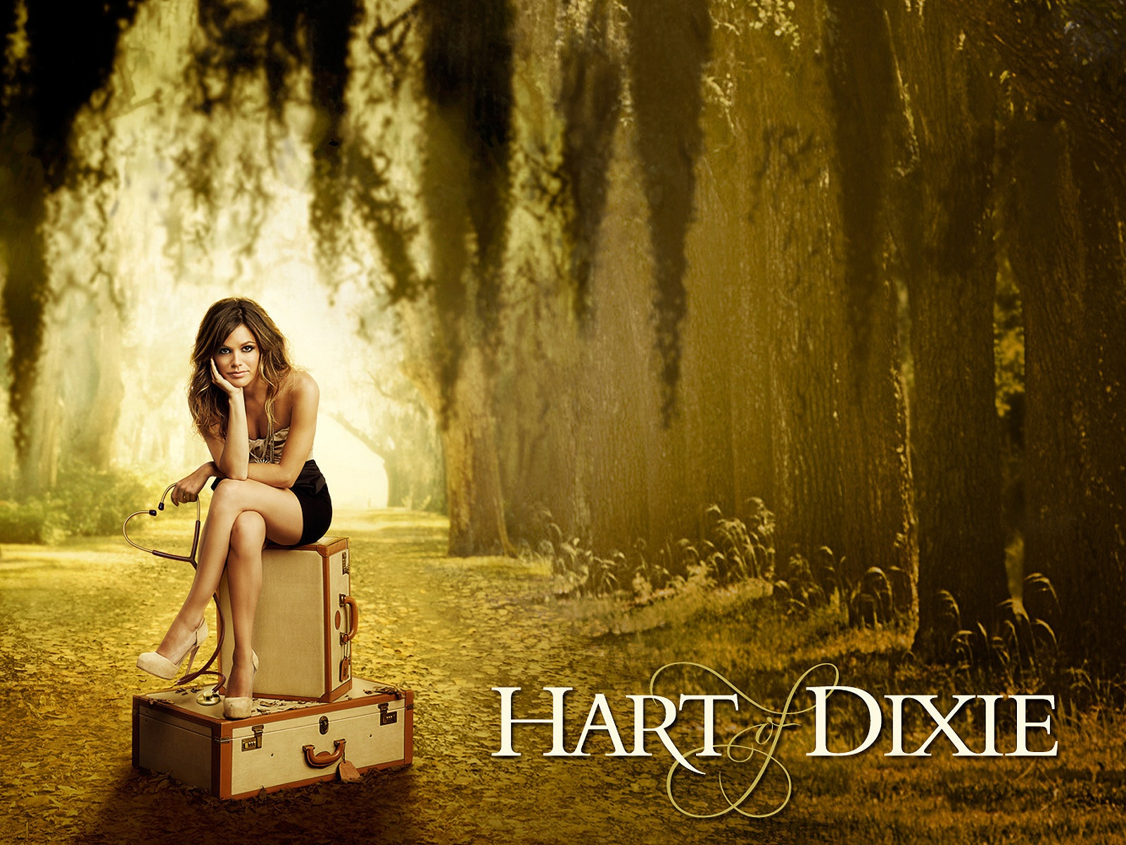 Hart-of-Dixie-Wallpapers-.jpg (1600×1200)