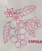 molde de capulines bordados en cinta