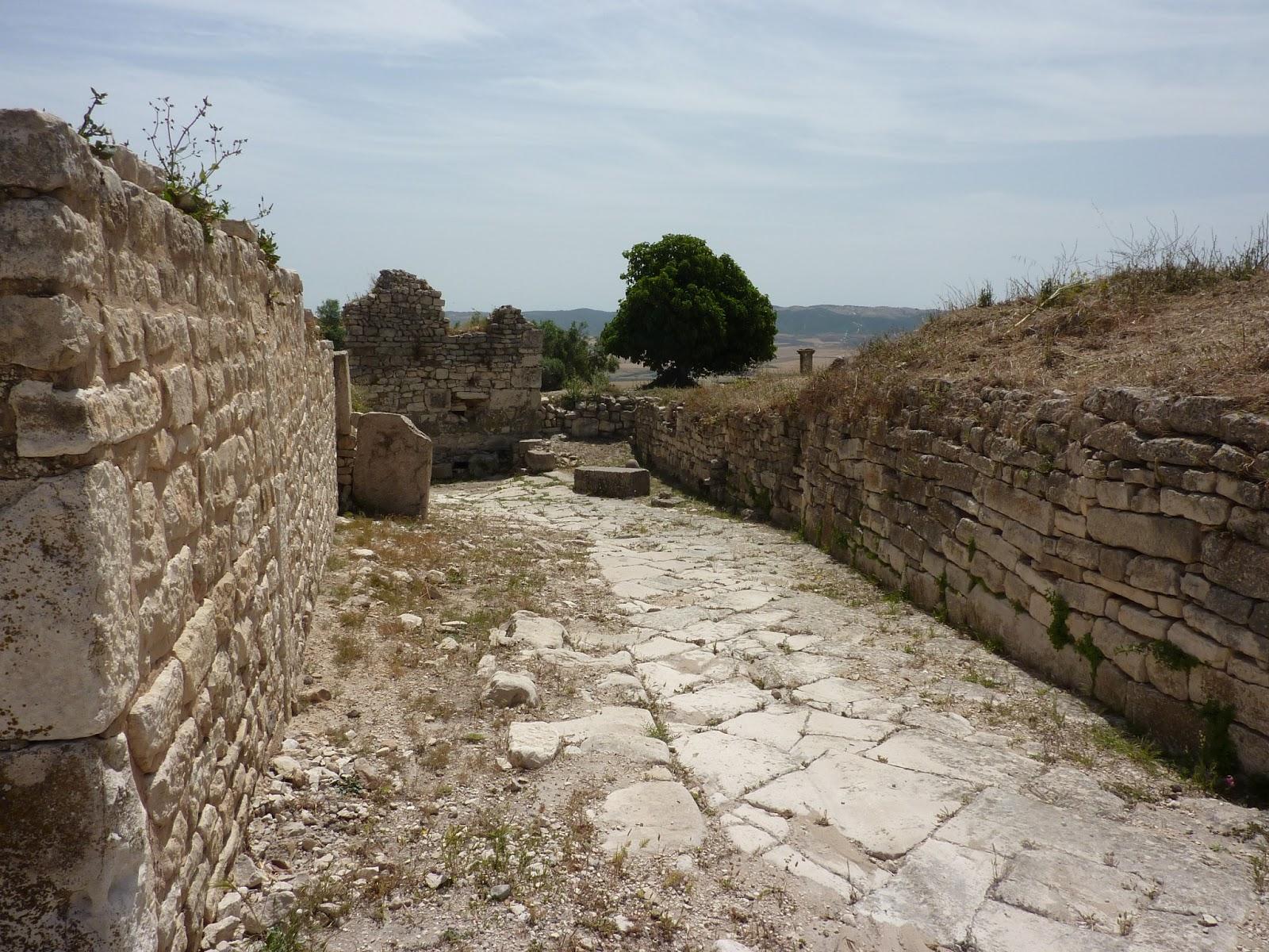 тунис дугга
