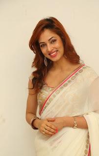 Actress Vidisha Srivastava Latest Pictures in Saree at Harinath Wedding Reception  7.jpg