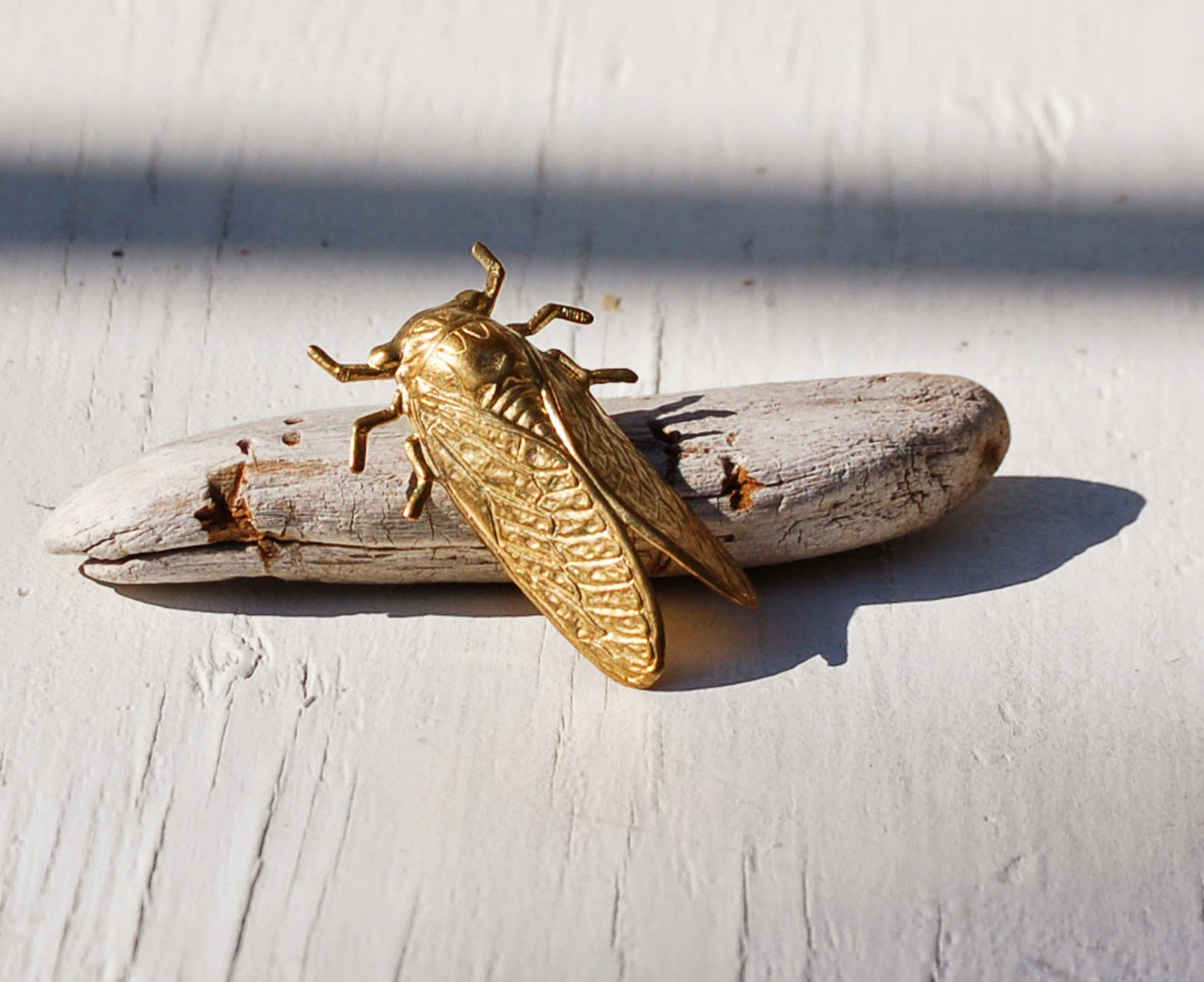 https://www.etsy.com/listing/165611302/cicada-brooch-insect-pin-golden-brass?ref=shop_home_active_3&ga_search_query=beetle