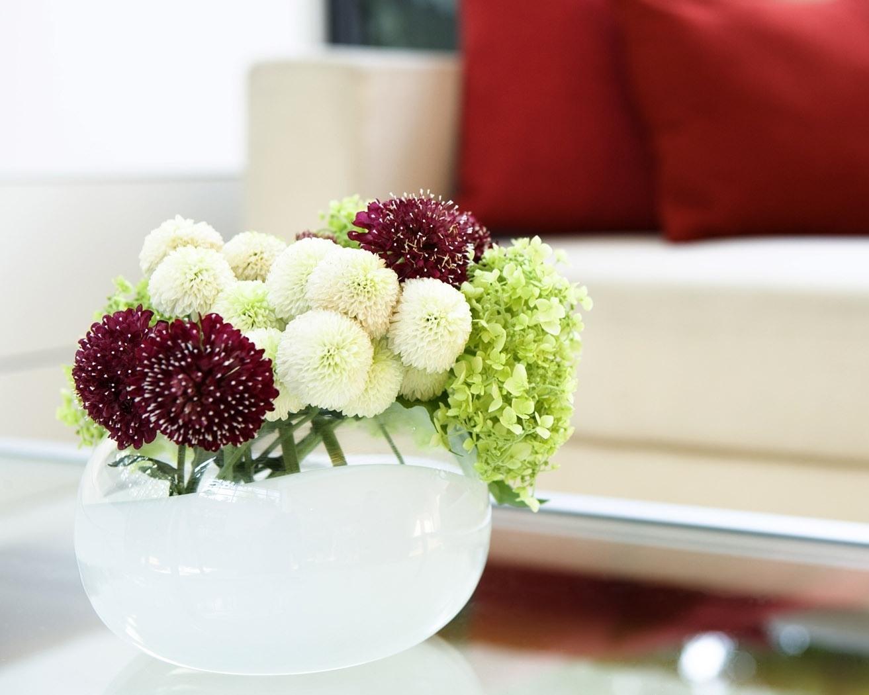 http://4.bp.blogspot.com/-ShQ9QKkJuu0/UEhEmLVzdVI/AAAAAAAAB1w/C8i1N0P8t8g/s1600/dahlias_flowers_bouquet_vase_sofa_comfort_32150_1313x1050.jpg