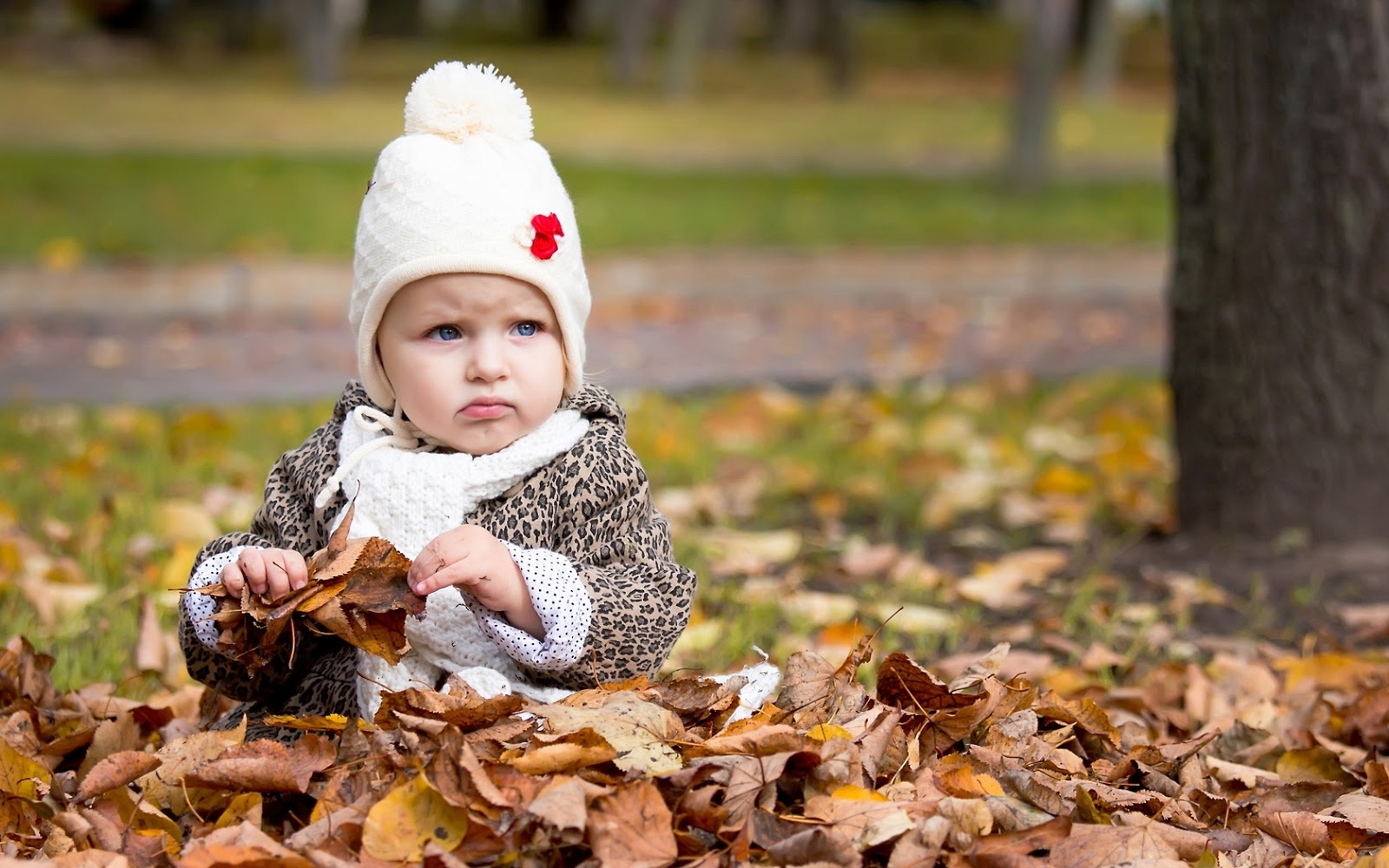 Cute Baby Hd Wallpapers Free Download Lite Mycket