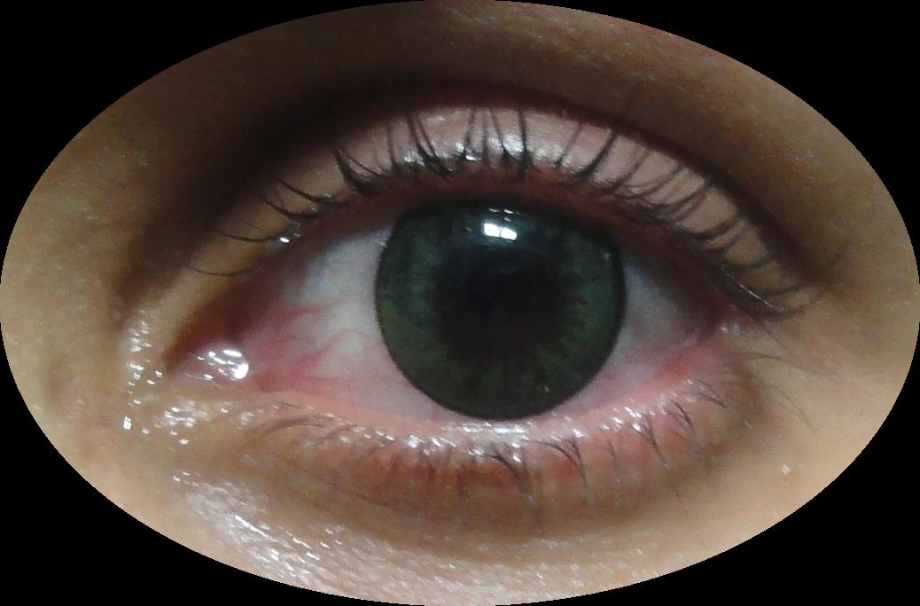 eye of hora