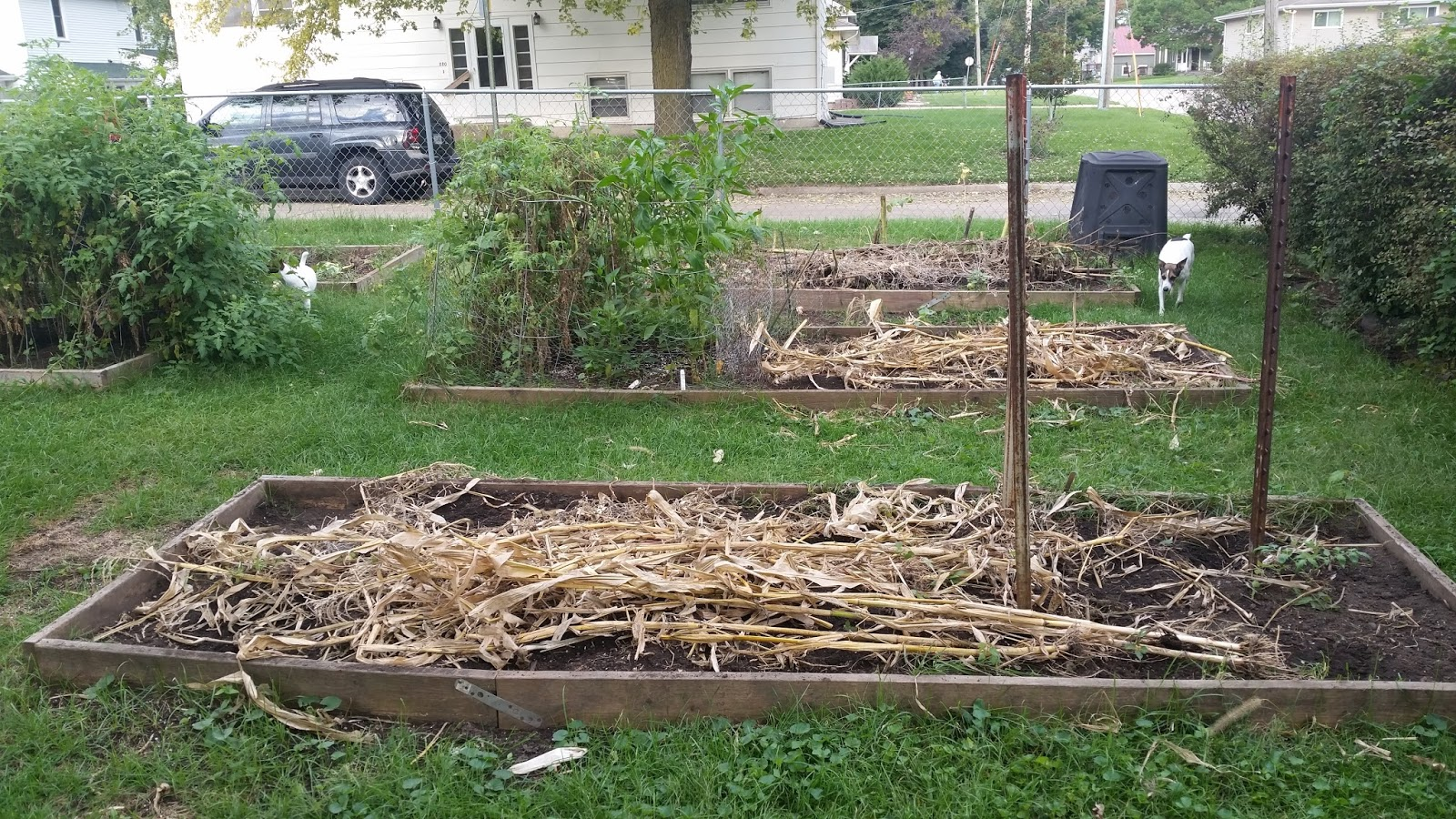 the sustainable couple how to prep an urban garden for winter