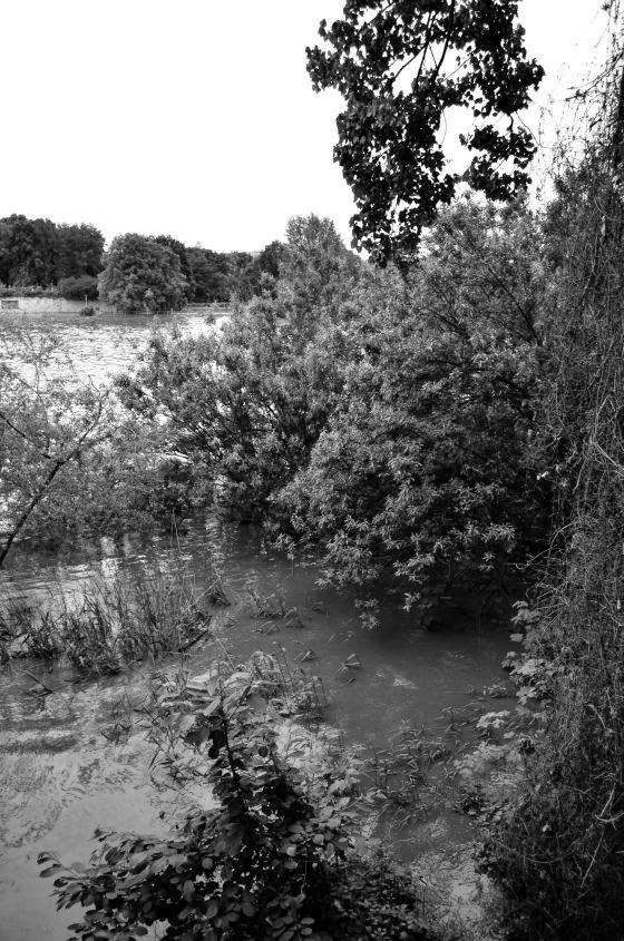 Hochwasser in Leipzig am Palmengartenwehr 2013