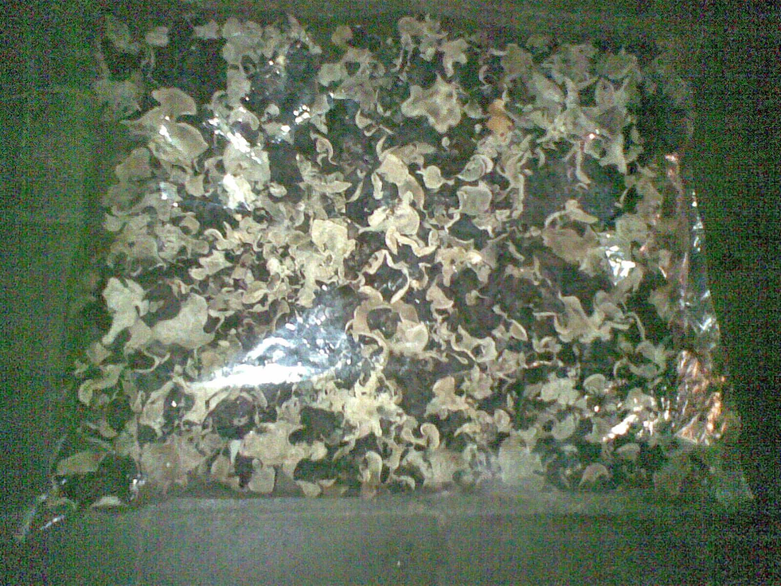 jamur kuping kering kemasan 1 Kg ( Rp.50.000,- )