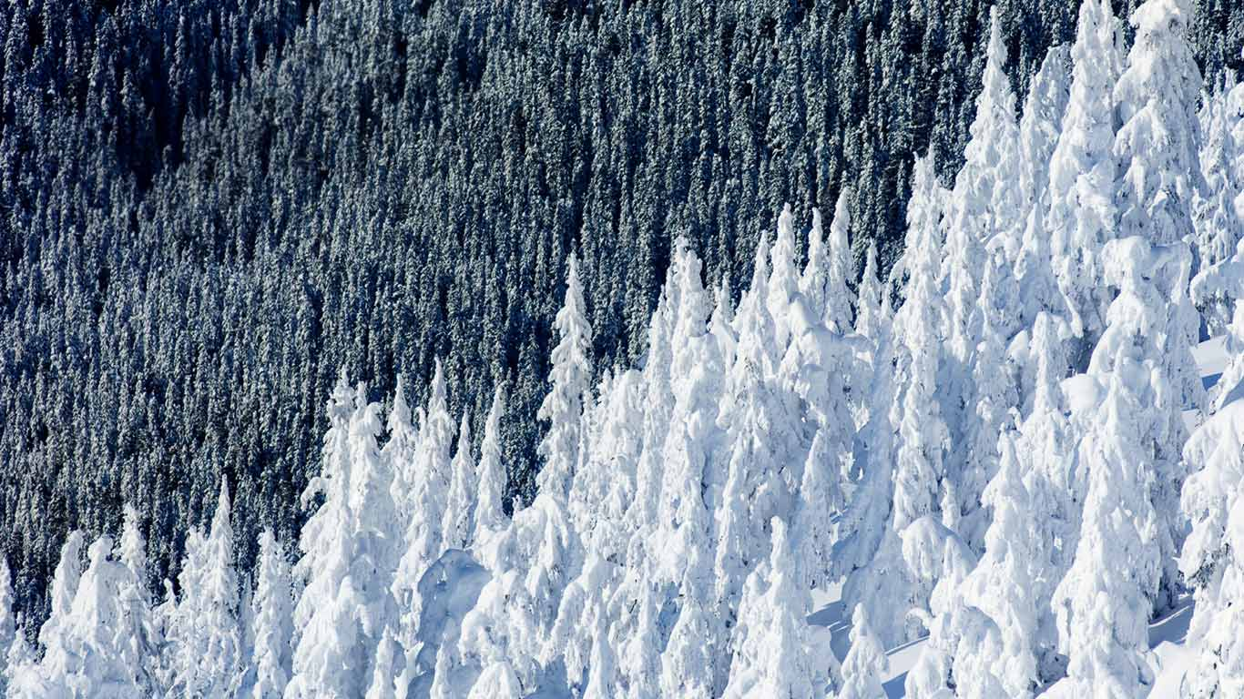 Whistler Mountain in British Columbia, Canada (© Phil Tifo/Tandem Stills + Motion)