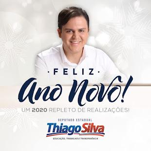 Deputado  THIAGO SILVA (PMDB)