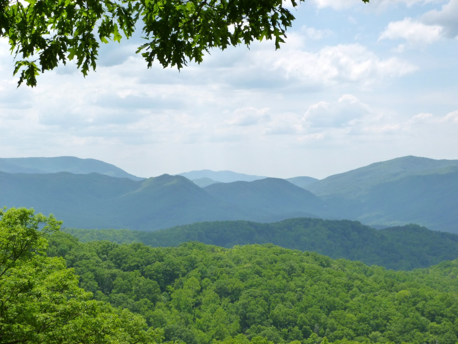 American travel journal roaring fork motor nature trail for Roaring fork smoky mountains