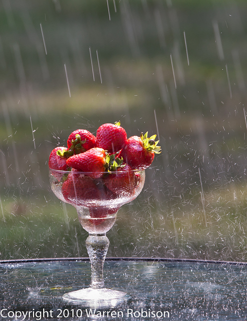 Strawberry's in the rain by warren.robison