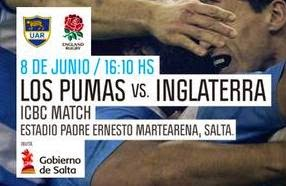 EL COLOR DEL RUGBY SALTEO