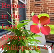 PICTURE OF THE WEEK: Are you rejoicing in the Lord?