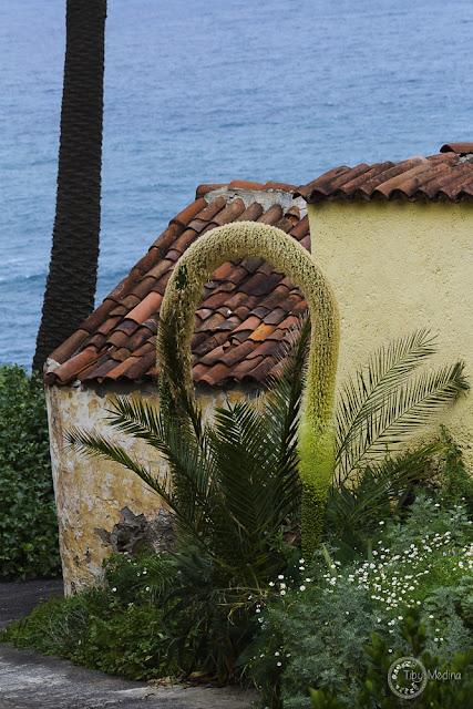 ventana-foto-tiby-tenerife-paisajes-rambla-castro