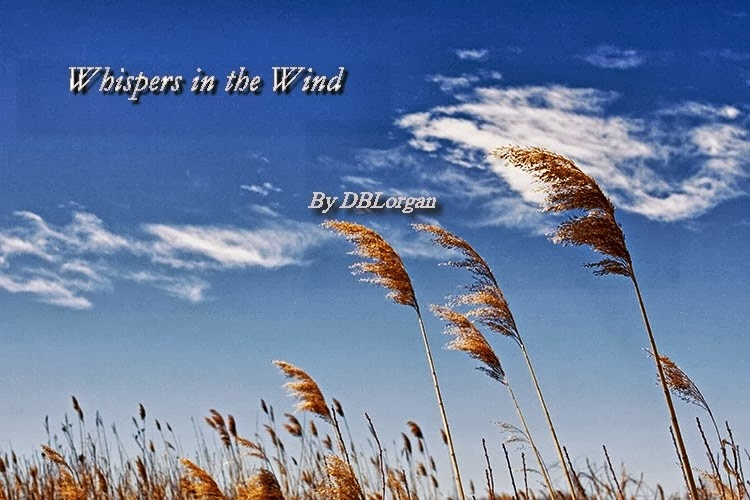 Whispers in the Wind...  where answers are given