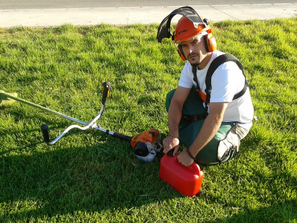 Talleres de empleo carlos iii la desbrozadora for Trabajo jardinero
