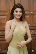 Pranitha Subhash Photos at Pandavulu Pandavulu Tummeda Audio-thumbnail-19