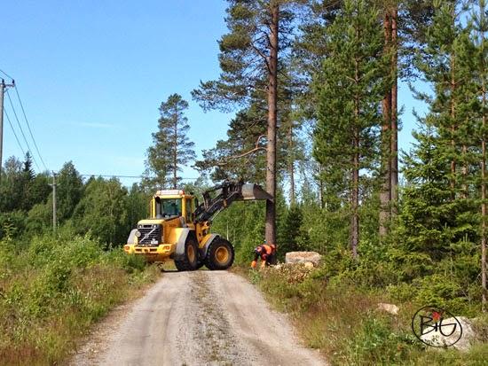 vägen breddas genom att träd tas ner så huset kan komma fram