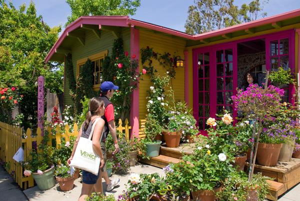 home garden designs ideas - Home And Garden Design Ideas