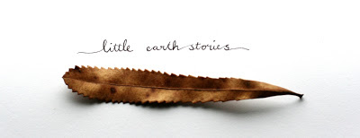 little earth stories