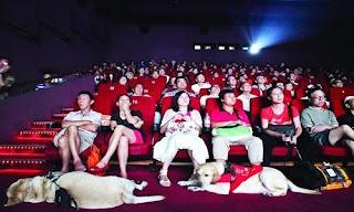 plateia lotada em sessão especial de Colegas