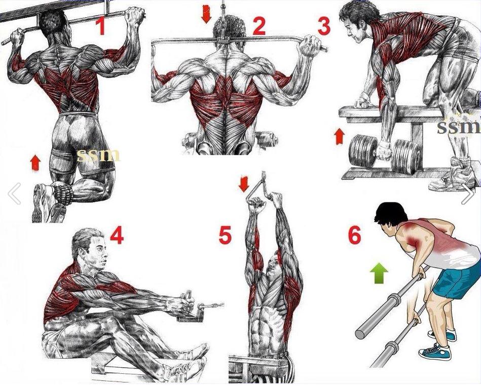 When It Comes To Back Exercises Most Men