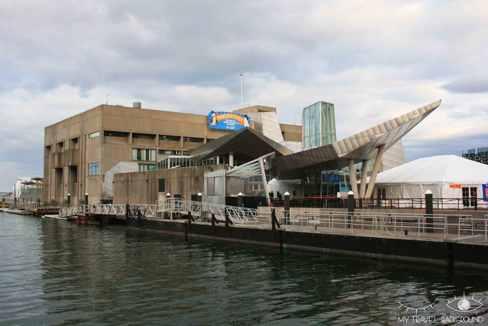 My Travel Background : New England Aquarium
