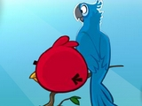 Angry Birds Rio Unlock