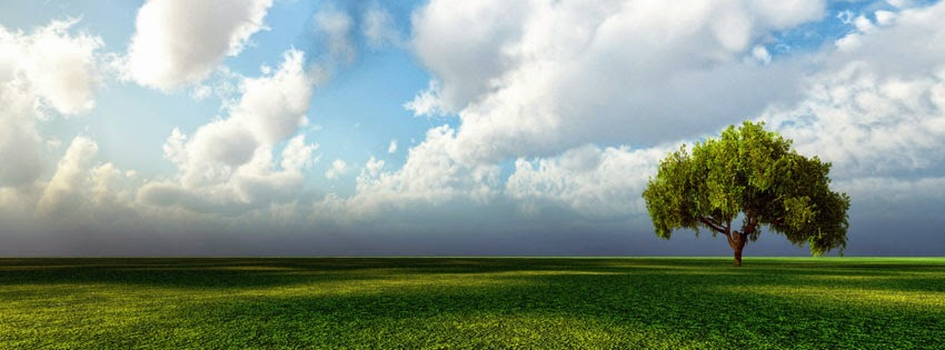 Green and sky Facebook cover photo