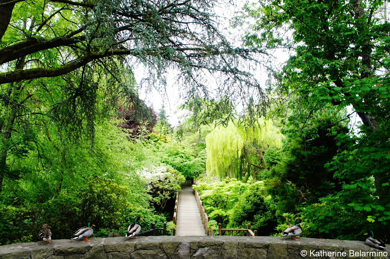 Crystal Springs Rhododendron Garden Entrance Portland Oregon